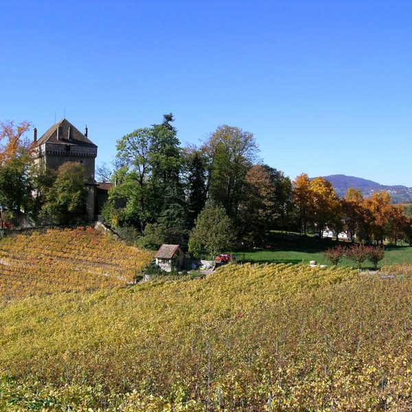 Châtelard castle in the countryside around Montreux is a popular attraction near the Tralala Hotel